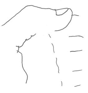 PALA arrebossART lagunas tello, ruben